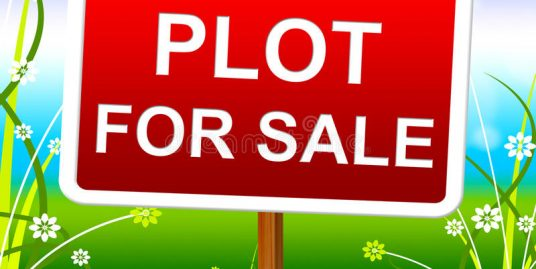4 Plots of land in Koilani Limassol total 6329 sq m