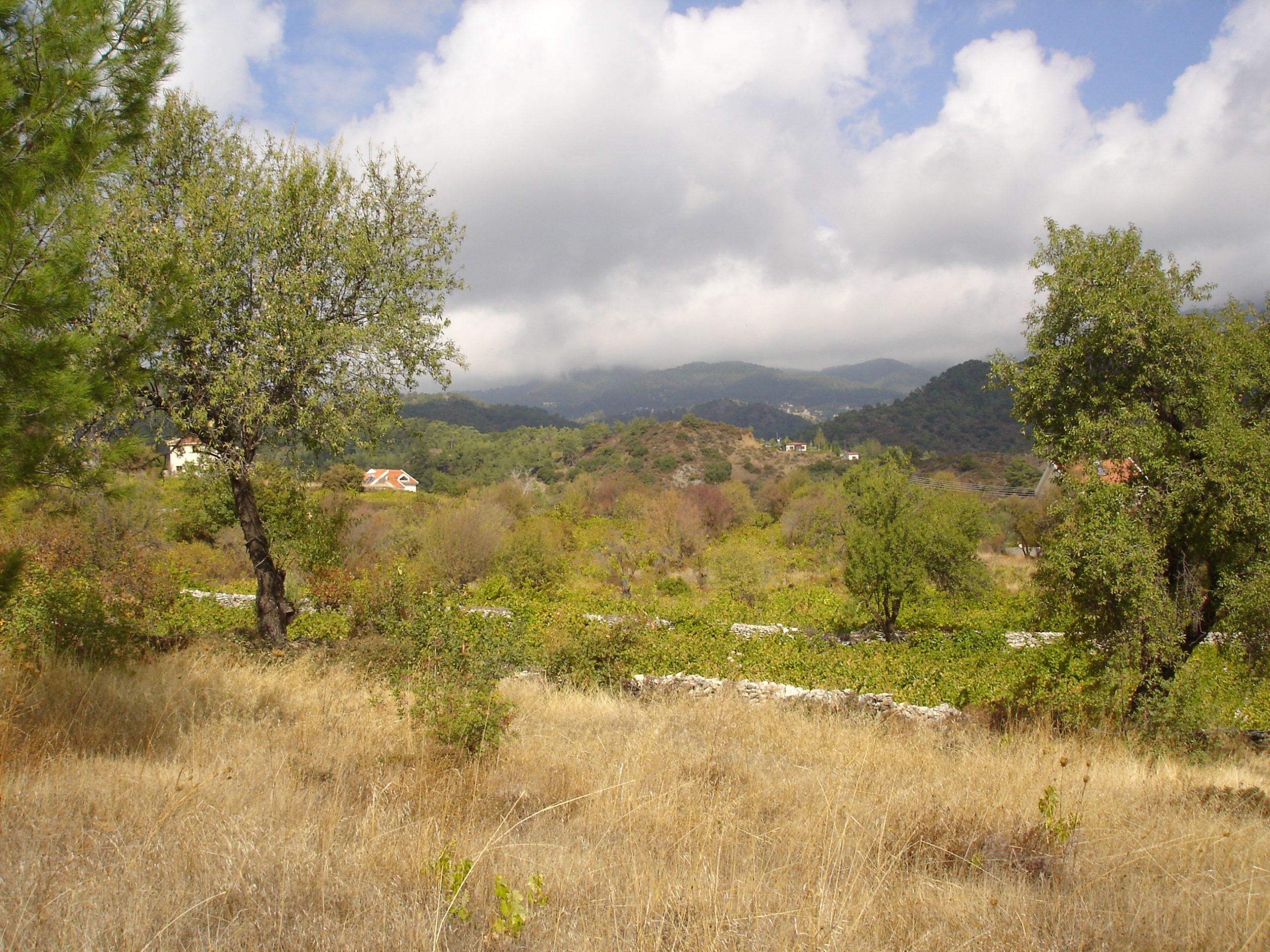 Residential piece of land in Pera Pedi village
