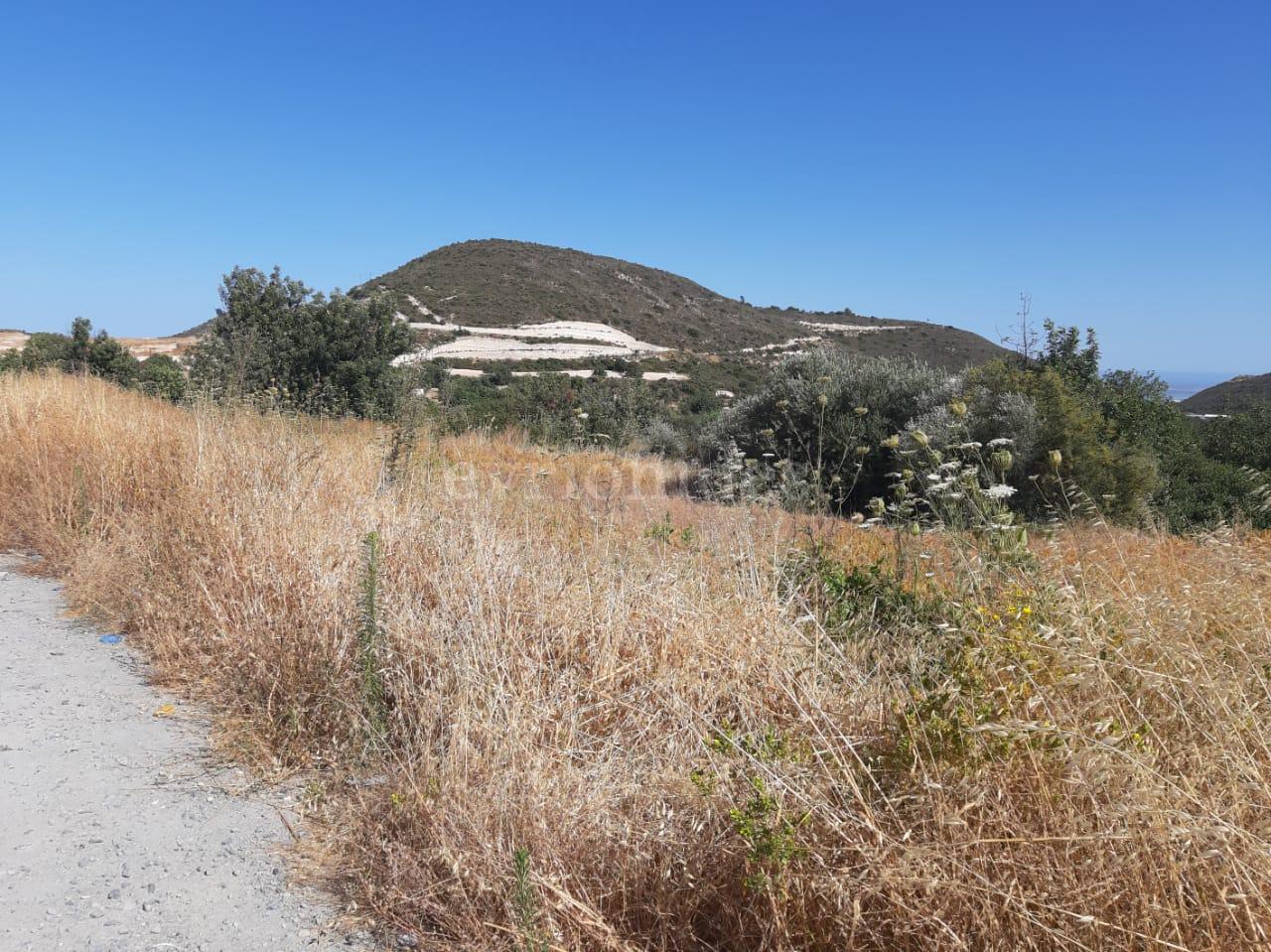 Heavy industrial land in Ypsonas