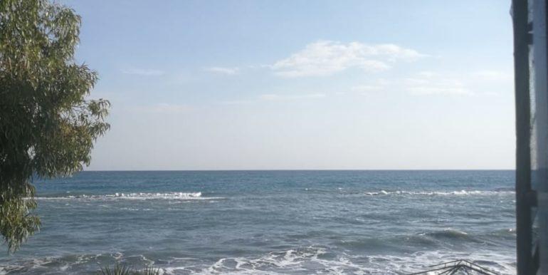 Sea Breeze 14 (3)