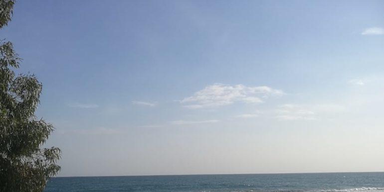 Sea Breeze 14 (4)