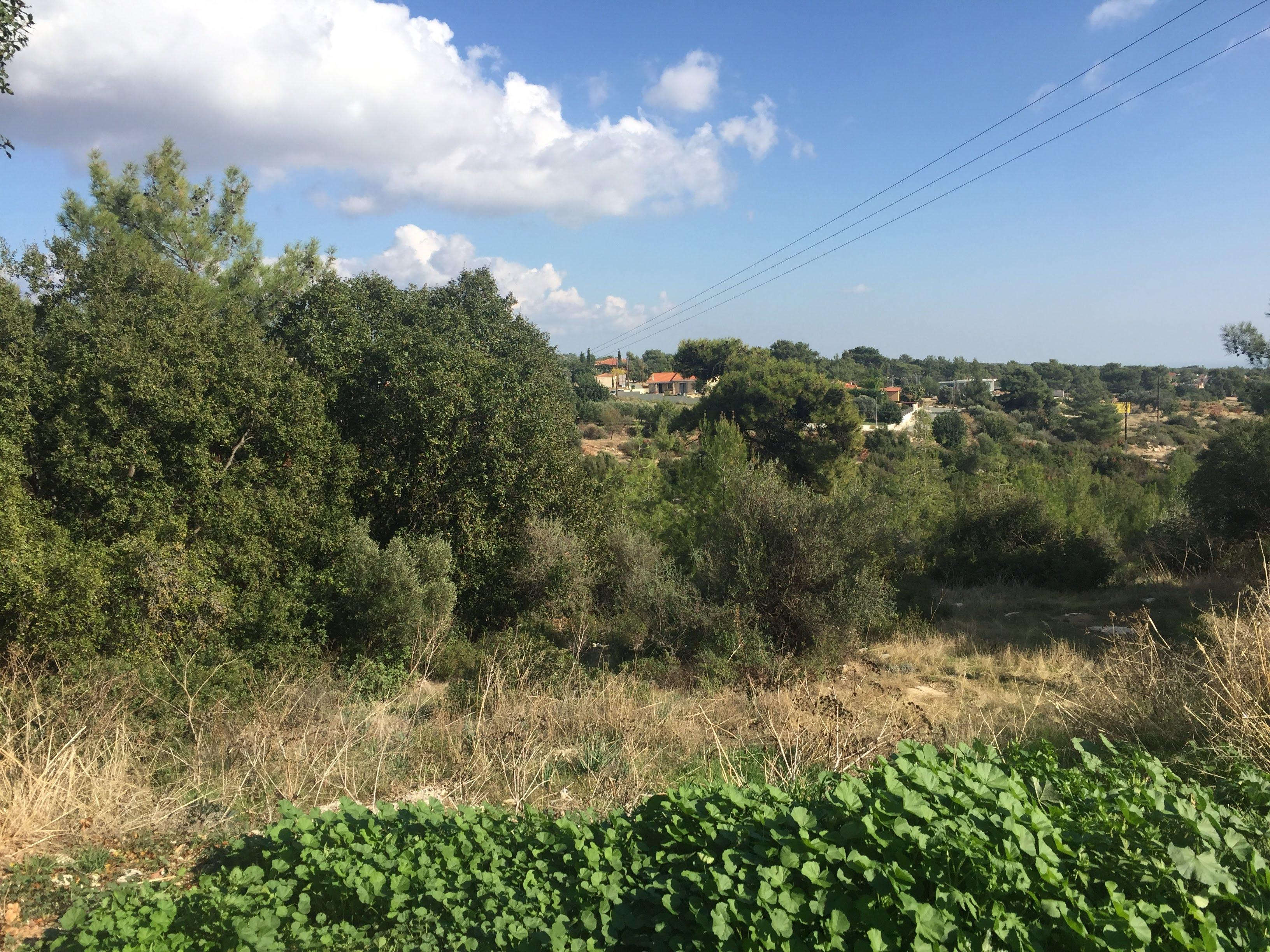 Residential Land in Souni Limassol