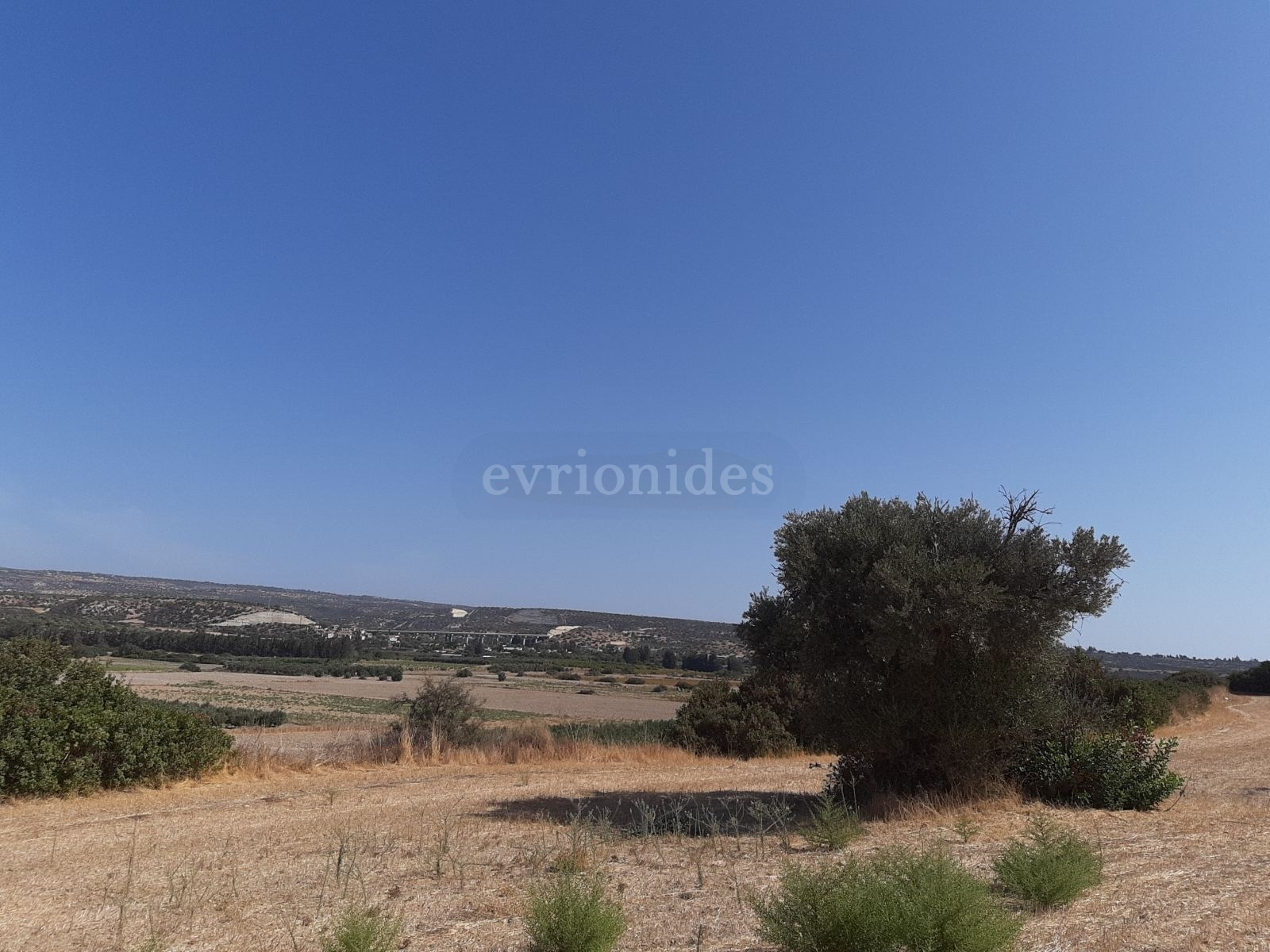 Large plot of land in Paramali village