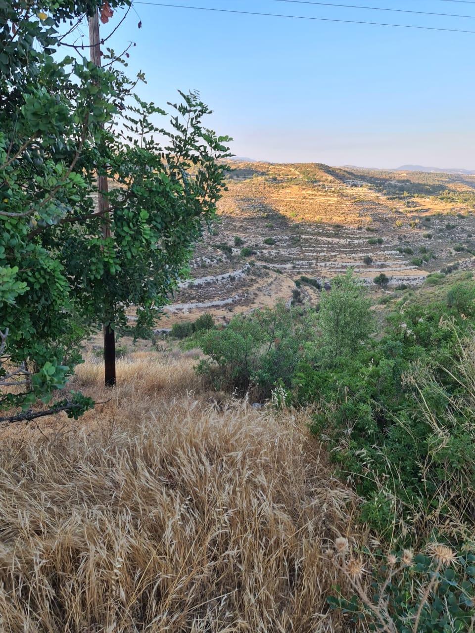 Land in Agios Amvrosios