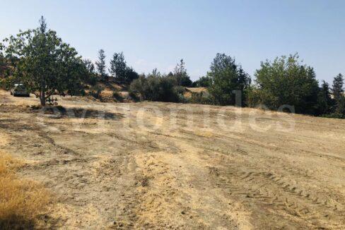 Agricultural Land In Parekklisia Village (11)