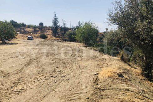 Agricultural Land In Parekklisia Village (12)