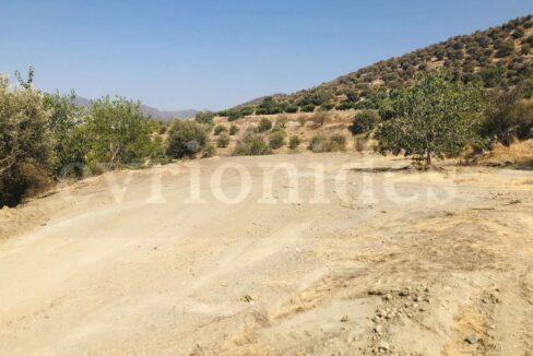 Agricultural Land In Parekklisia Village (3)