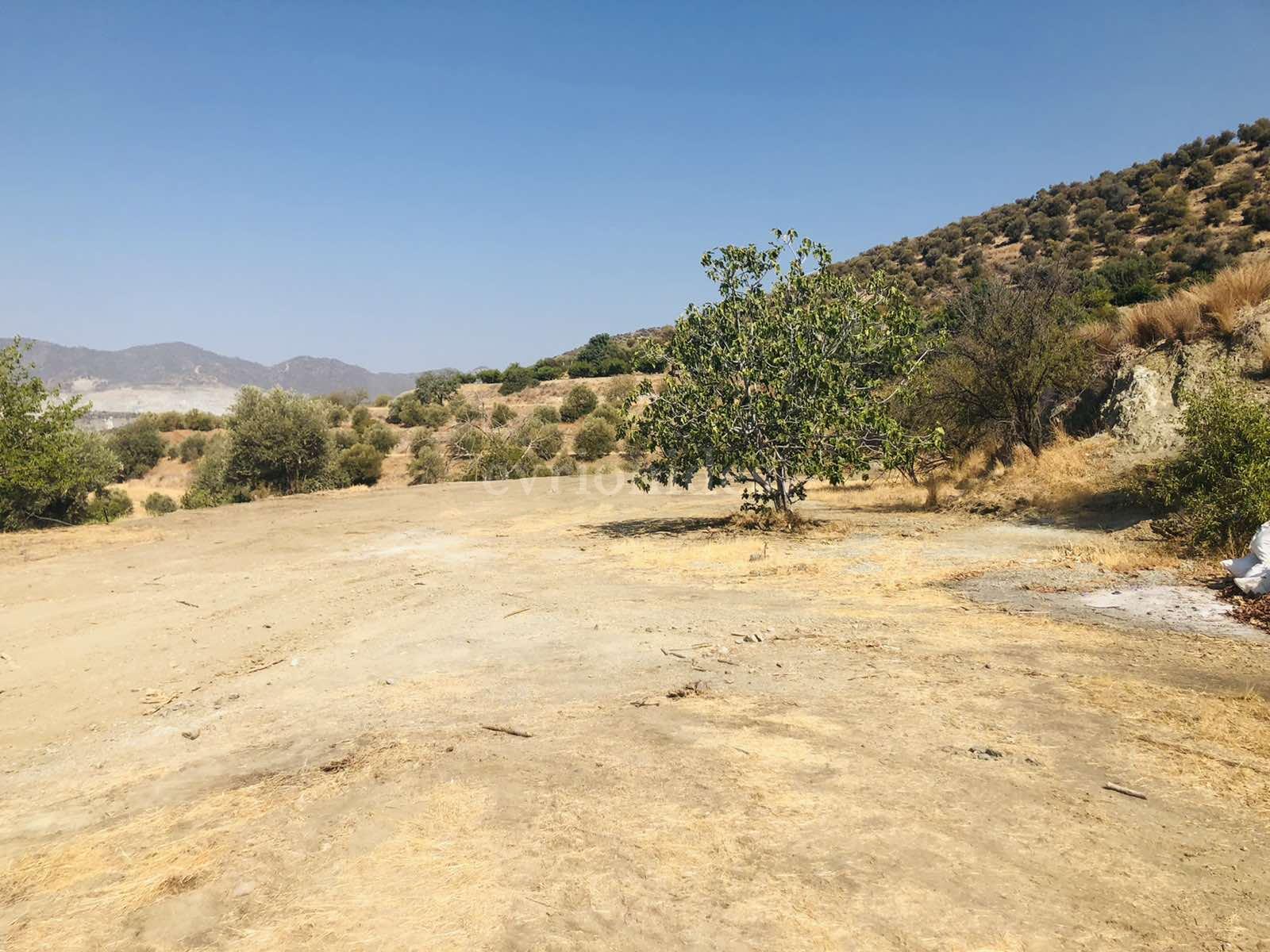 Agricultural land in Parekklisia village