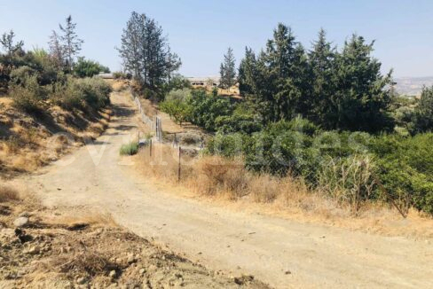 Agricultural Land In Parekklisia Village (6)