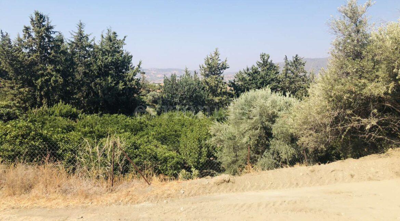 Agricultural Land In Parekklisia Village (7)