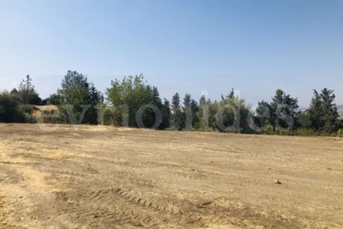 Agricultural Land In Parekklisia Village (8)