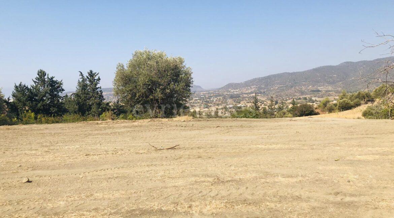 Agricultural Land In Parekklisia Village (9)
