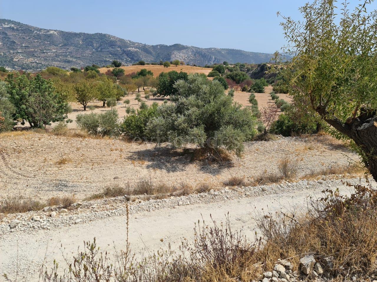 Land in Limnatis village
